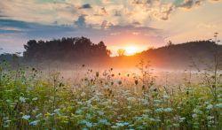 Чапсы для тех, кто знает, что такое утренняя роса и кустарники под проливным дождем